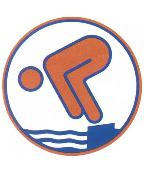 Deutsches Schwimmabzeichen - Bronze